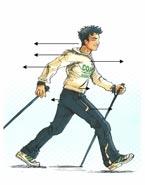 marche_nordique_posture
